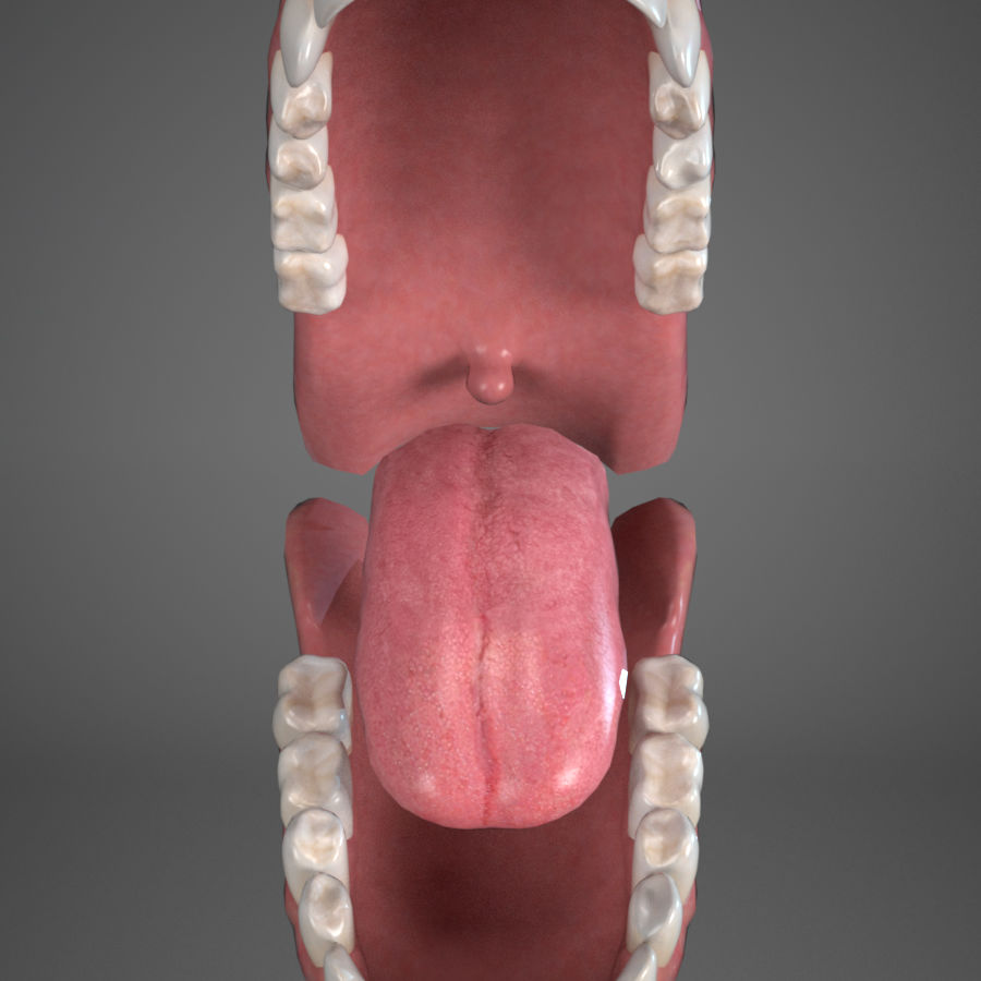Cabeça masculina royalty-free 3d model - Preview no. 16