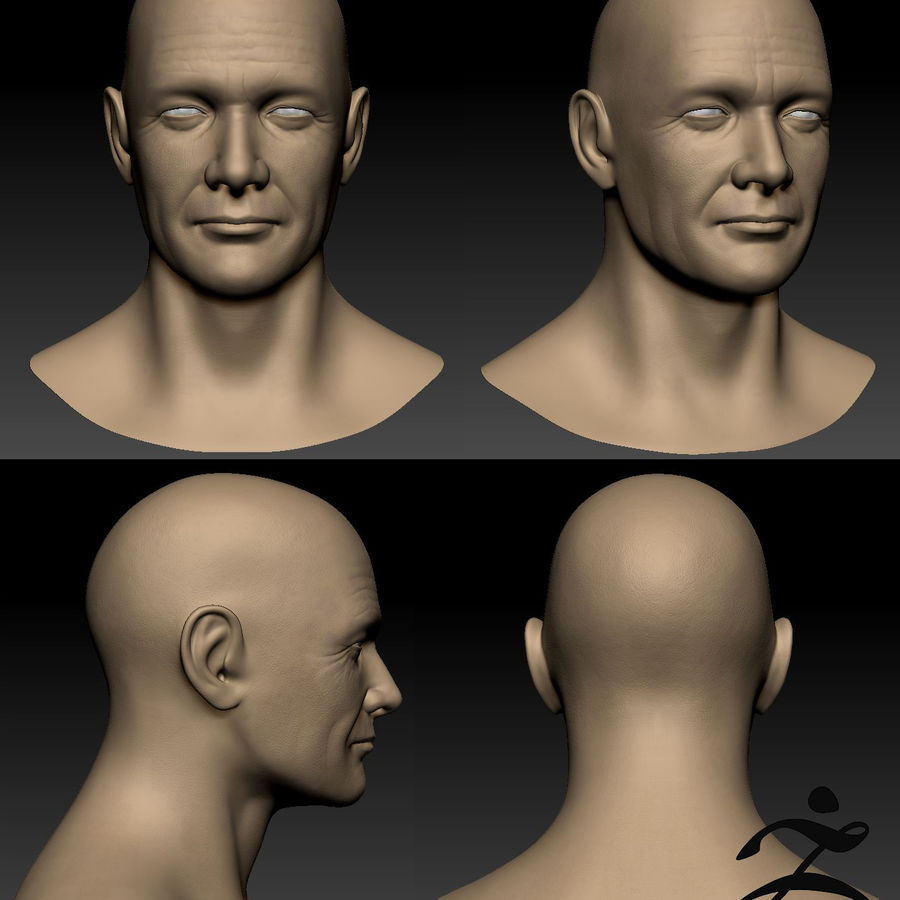 Cabeça masculina royalty-free 3d model - Preview no. 18