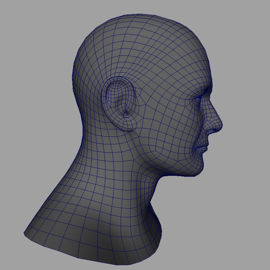 Cabeça masculina royalty-free 3d model - Preview no. 27