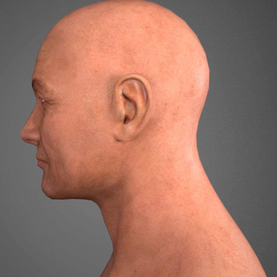 Cabeça masculina royalty-free 3d model - Preview no. 3
