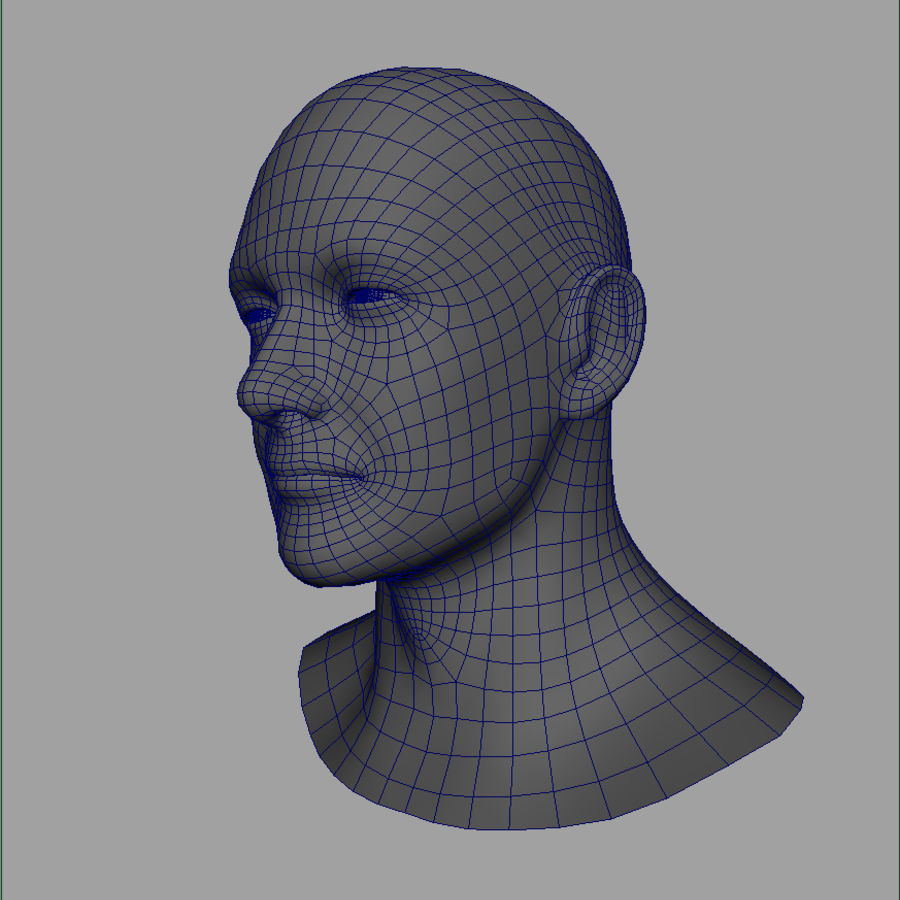 Cabeça masculina royalty-free 3d model - Preview no. 25