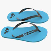Quiksilver Molokai Flip Flops All Colors 3d model