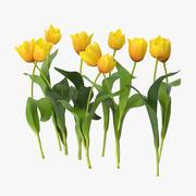 Tulpen Geel - Natuurlijke groep 3d model