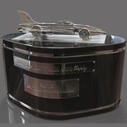 Daytona 500 Car trophy 3d model