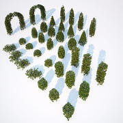 Formed Hedge Collection 3d model