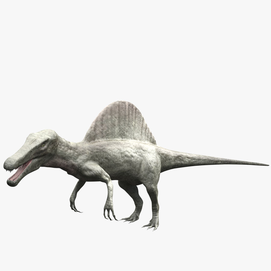 Spinosaurus - rigged royalty-free 3d model - Preview no. 1