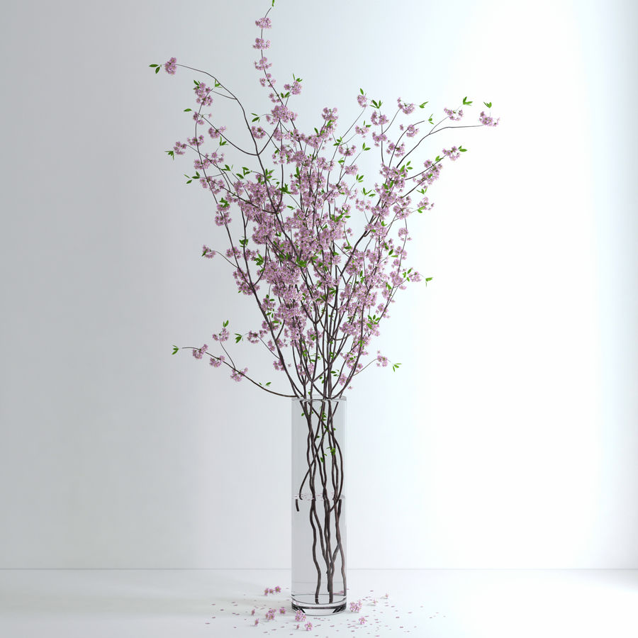 Cherry Blossom royalty-free 3d model - Preview no. 8