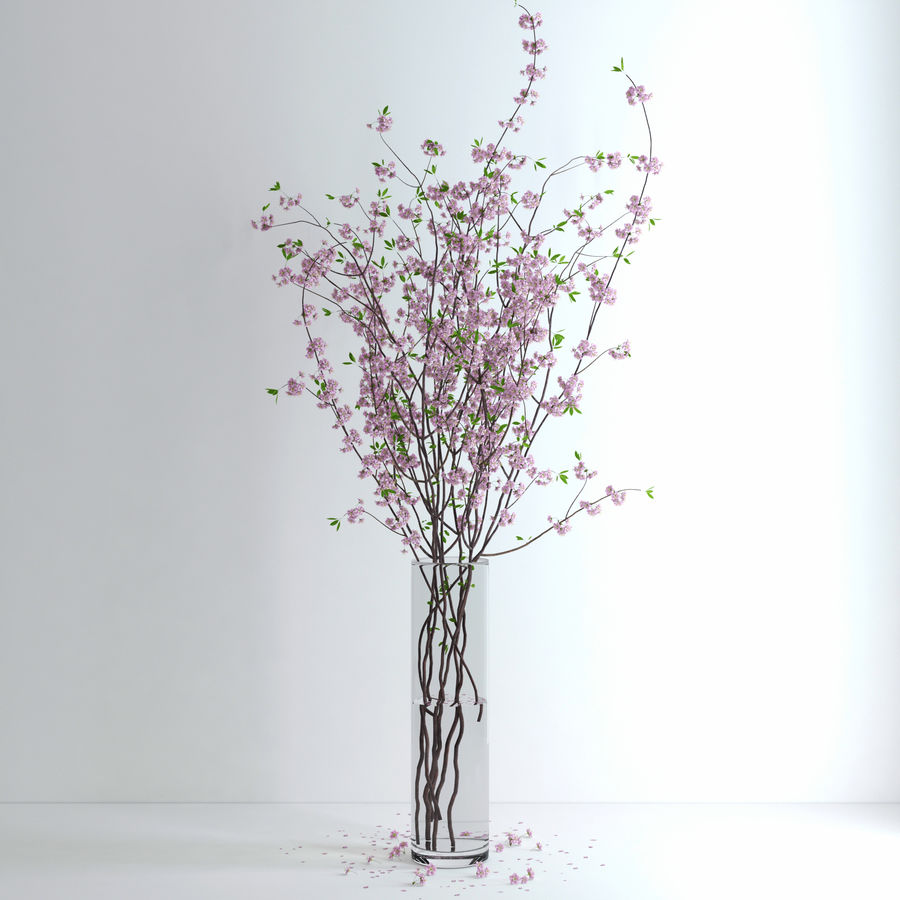 Cherry Blossom royalty-free 3d model - Preview no. 7