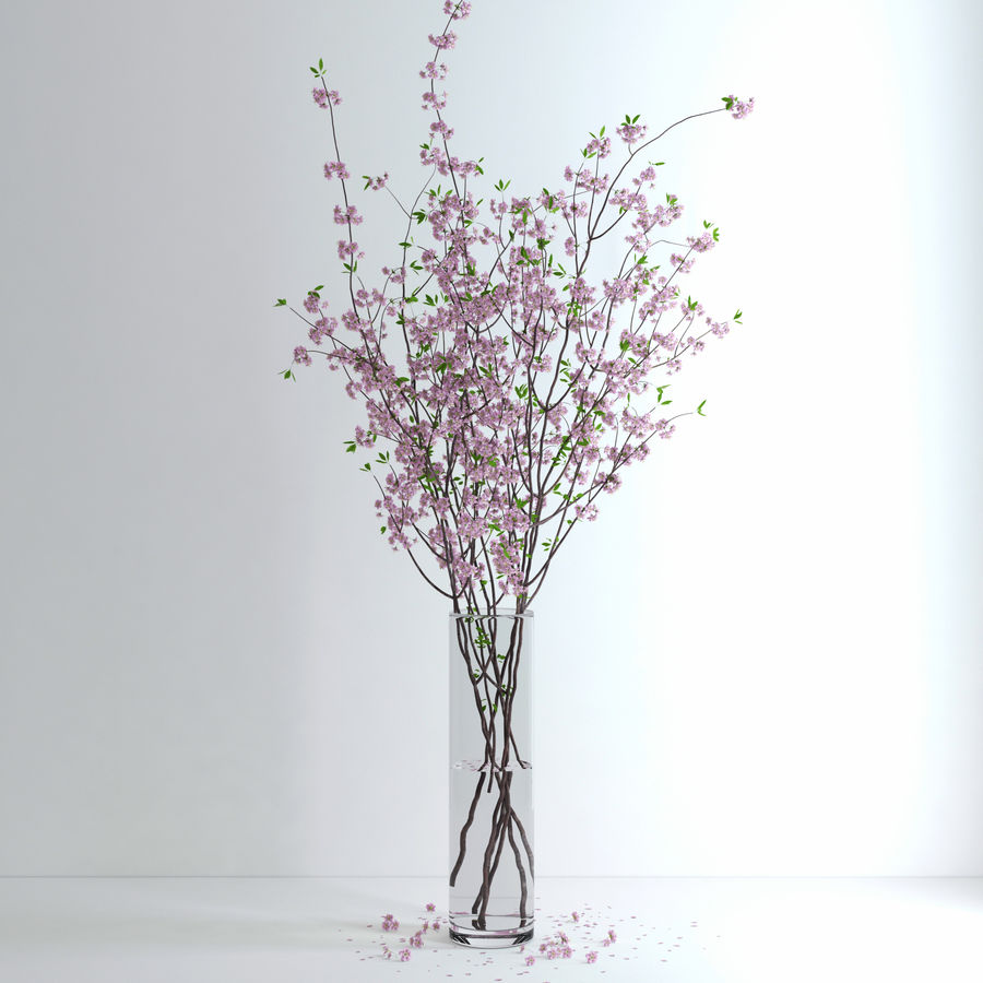 Cherry Blossom royalty-free 3d model - Preview no. 10