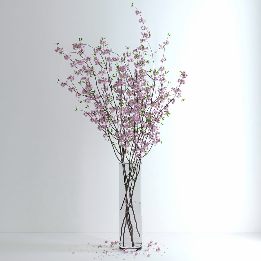 Cherry Blossom royalty-free 3d model - Preview no. 6