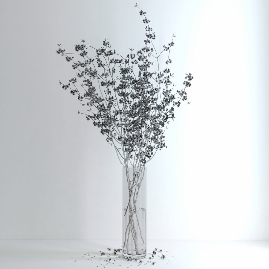 Cherry Blossom royalty-free 3d model - Preview no. 15