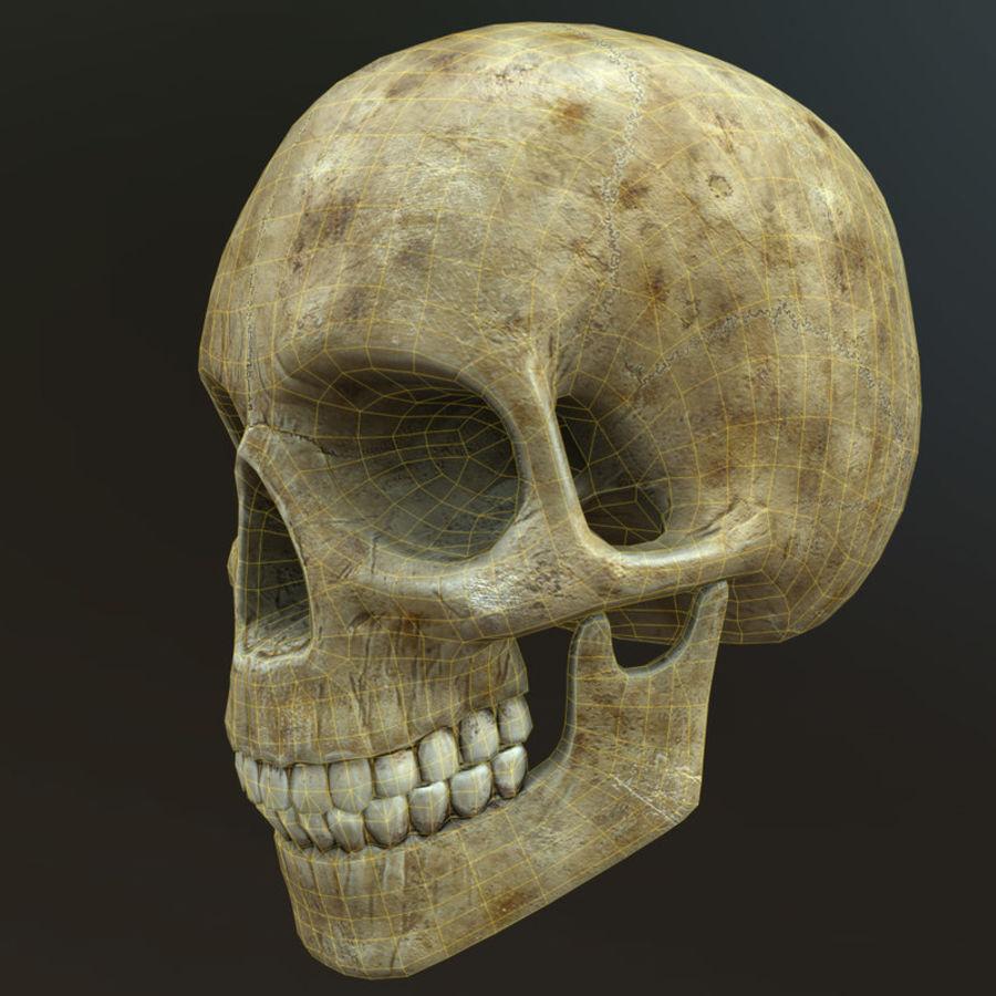 Человеческий череп royalty-free 3d model - Preview no. 7