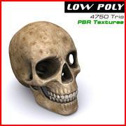Menselijke schedel 3d model