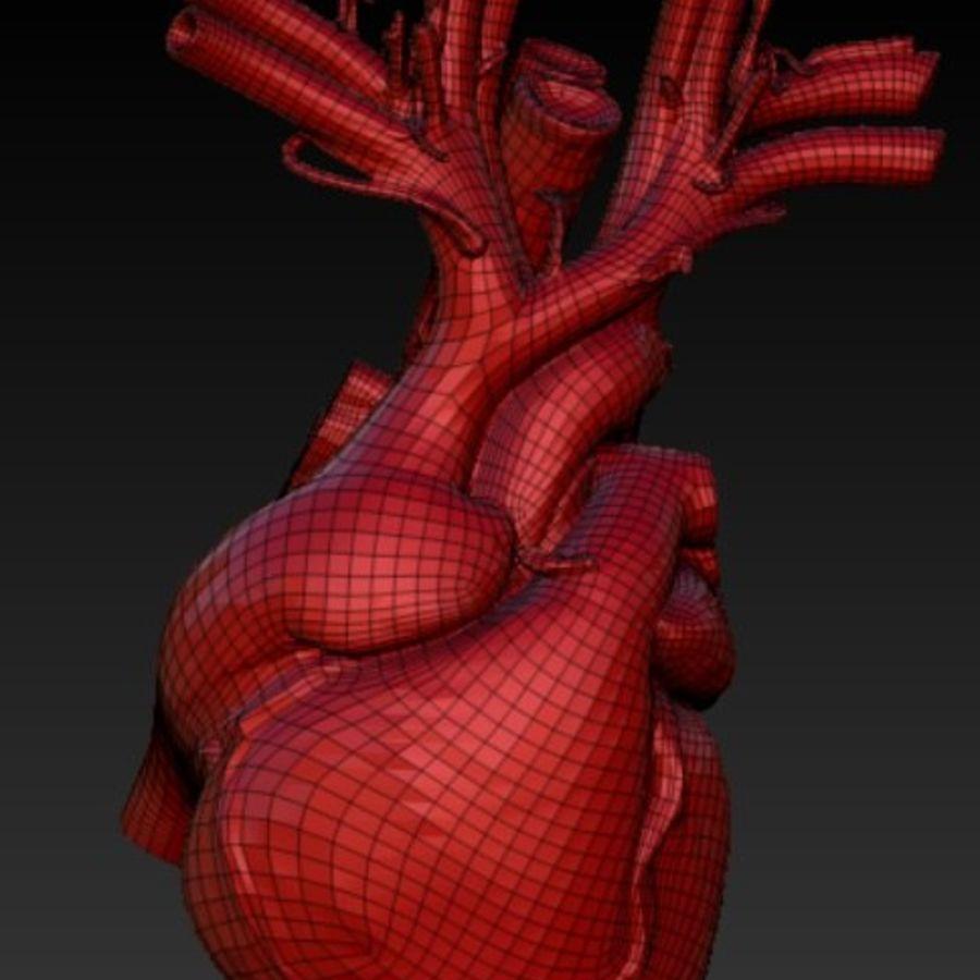 解剖的心脏 royalty-free 3d model - Preview no. 2