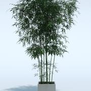 Plante Extérieure 8 3d model