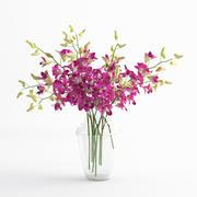 Орхидея дентробиум цветочная стеклянная ваза 01 3d model