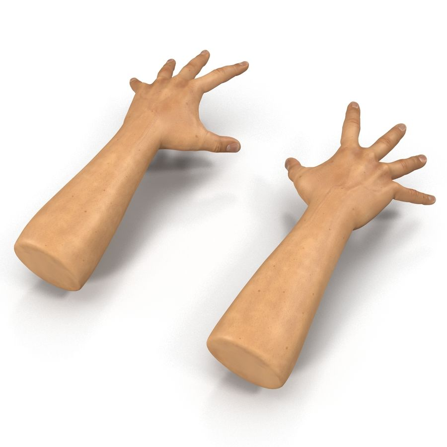 Man Hands 2 Pose 4 royalty-free 3d model - Preview no. 5