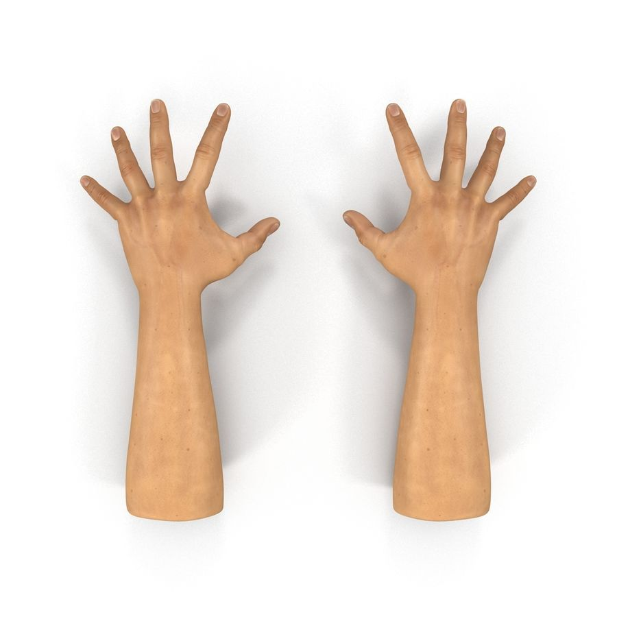 Man Hands 2 Pose 4 royalty-free 3d model - Preview no. 3
