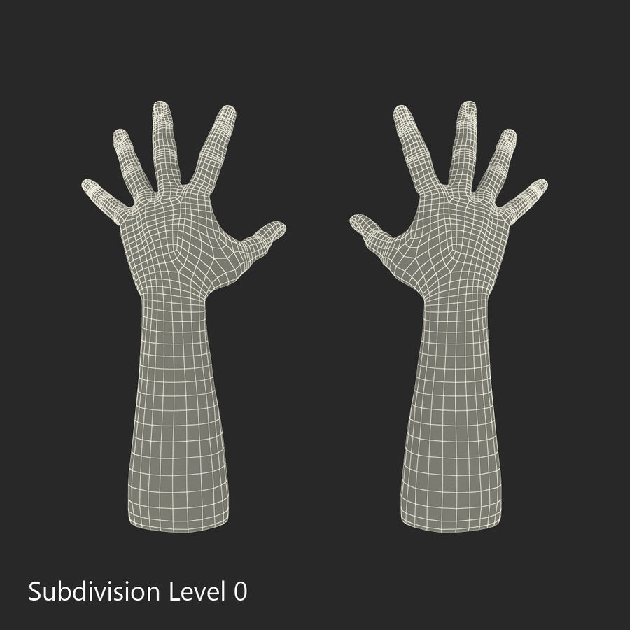 Man Hands 2 Pose 4 royalty-free 3d model - Preview no. 12