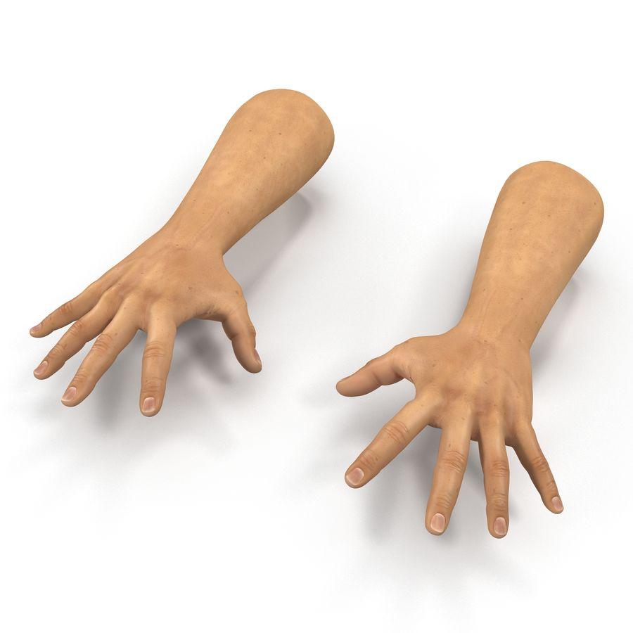 Man Hands 2 Pose 4 royalty-free 3d model - Preview no. 2