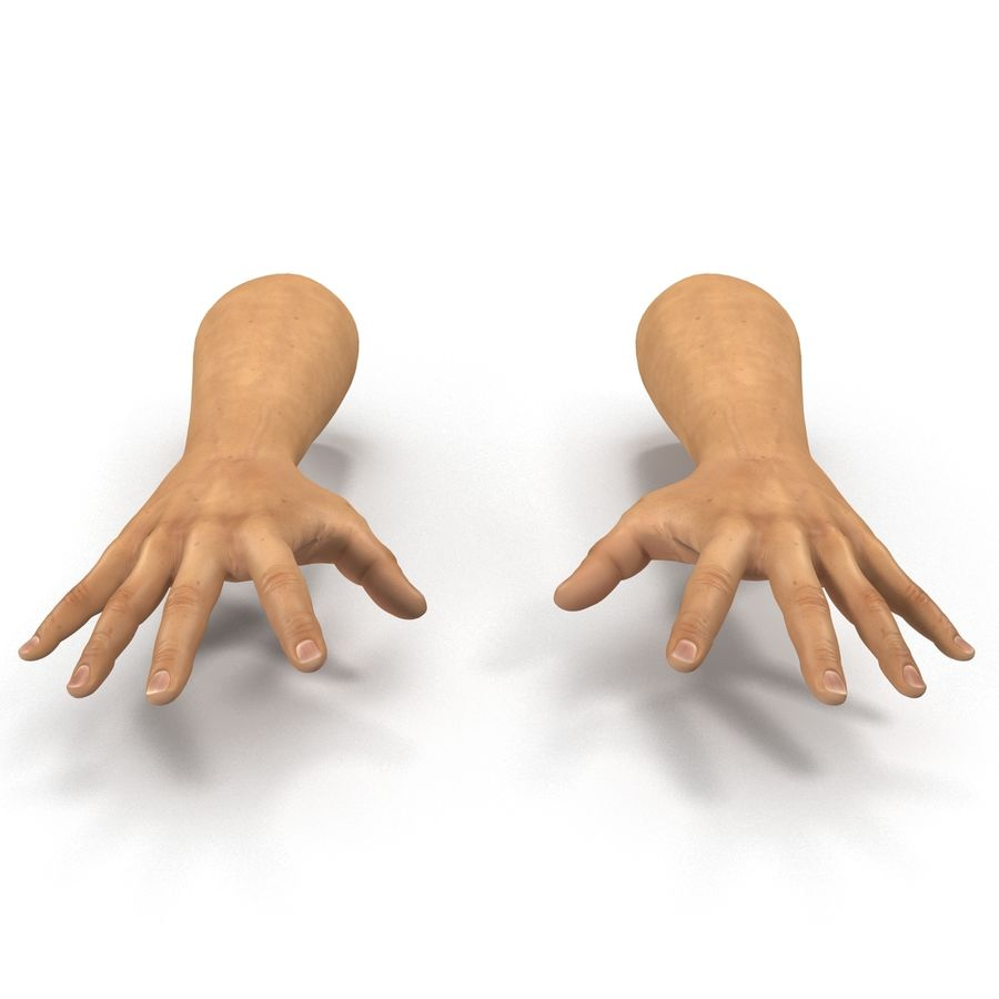 Man Hands 2 Pose 4 royalty-free 3d model - Preview no. 8