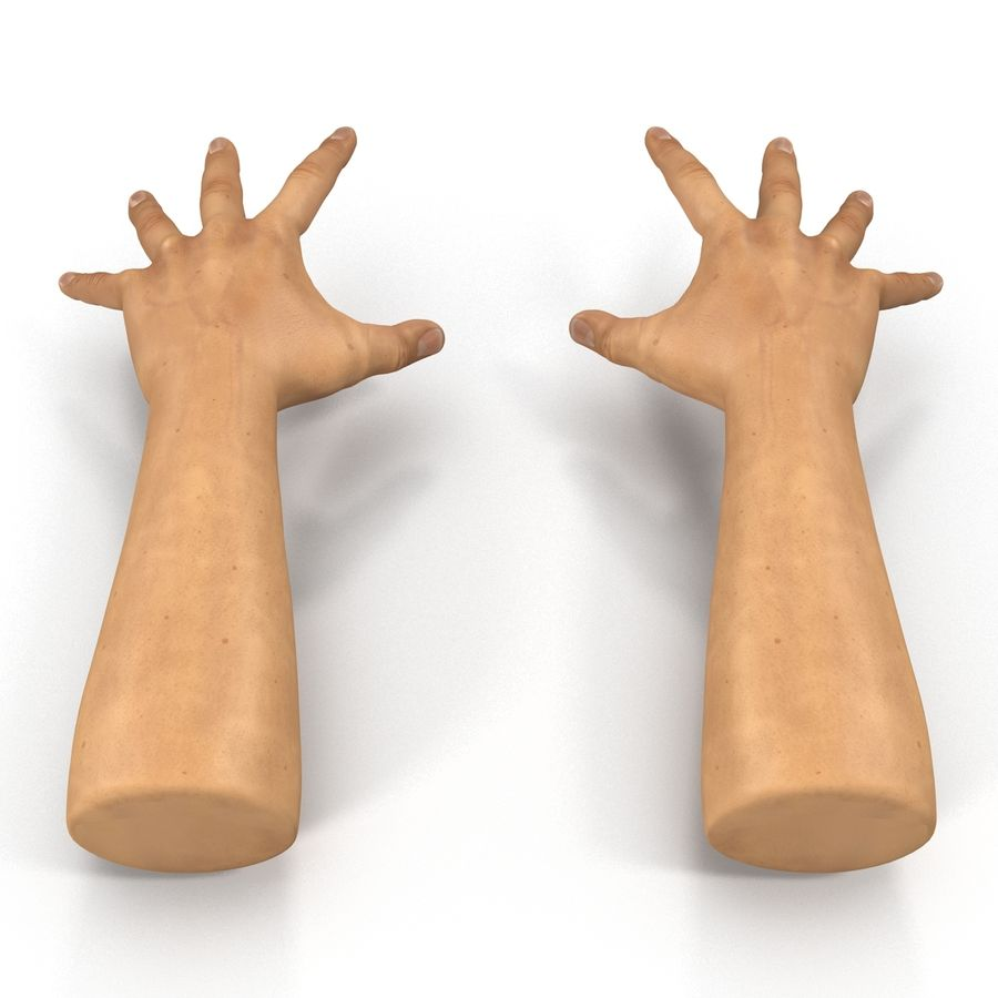 Man Hands 2 Pose 4 royalty-free 3d model - Preview no. 4