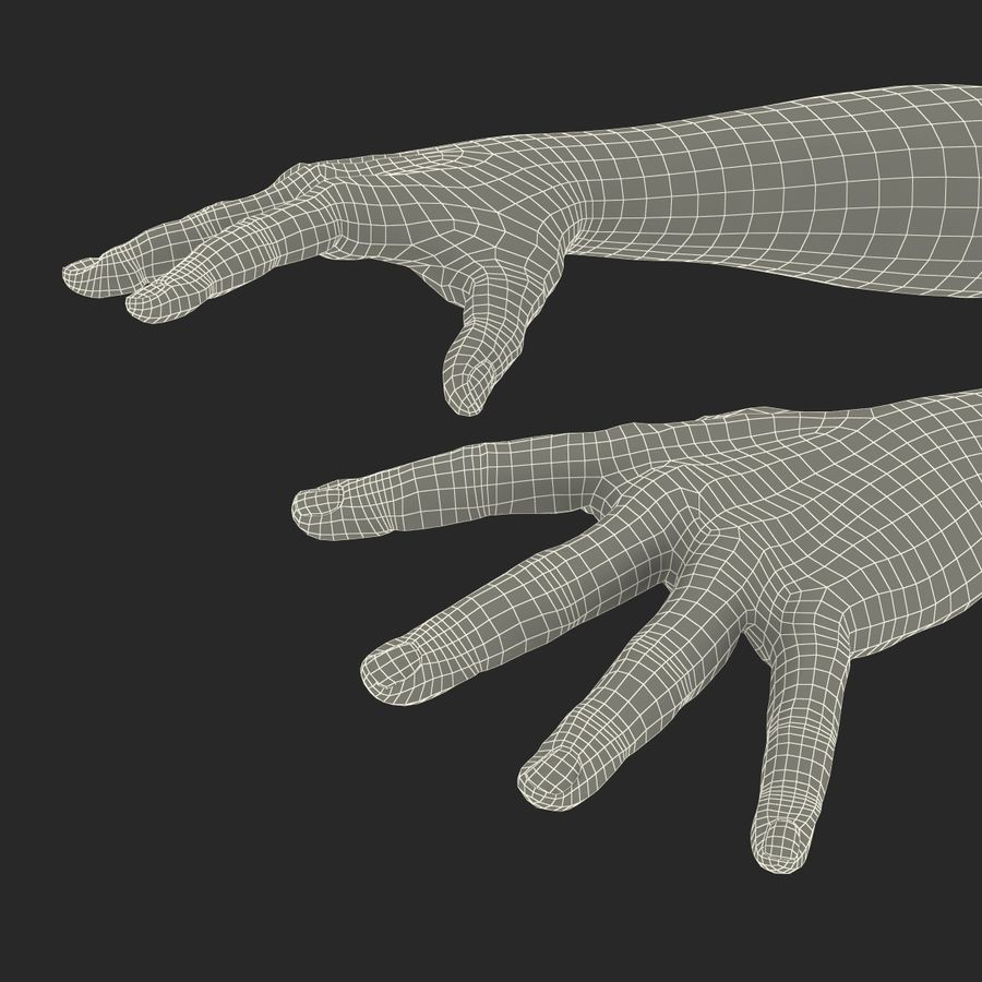 Man Hands 2 Pose 4 royalty-free 3d model - Preview no. 22