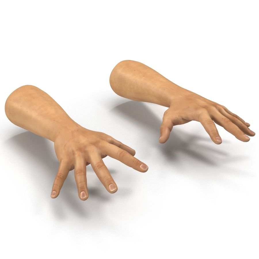 Man Hands 2 Pose 4 royalty-free 3d model - Preview no. 7