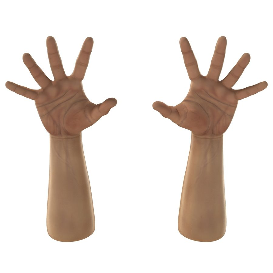 Man Hands 2 Pose 4 royalty-free 3d model - Preview no. 9