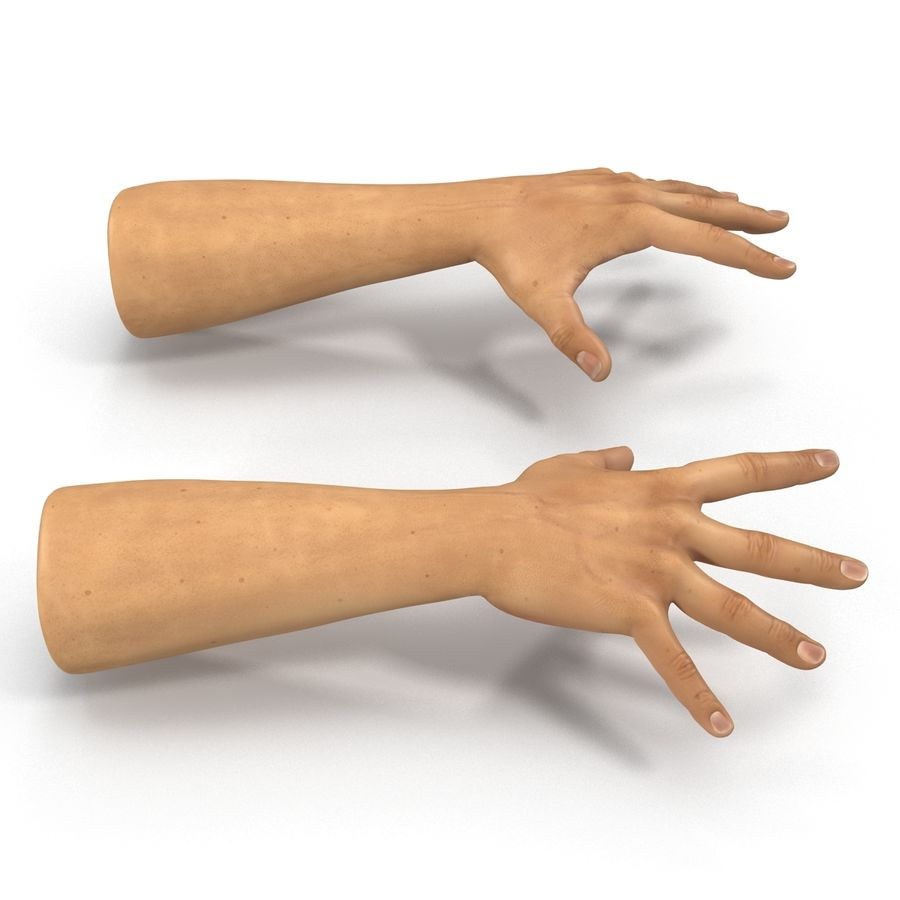 Man Hands 2 Pose 4 royalty-free 3d model - Preview no. 6