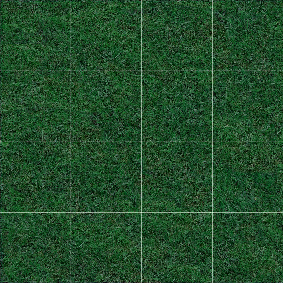 Kentucky Bluegrass Grass royalty-free 3d model - Preview no. 14