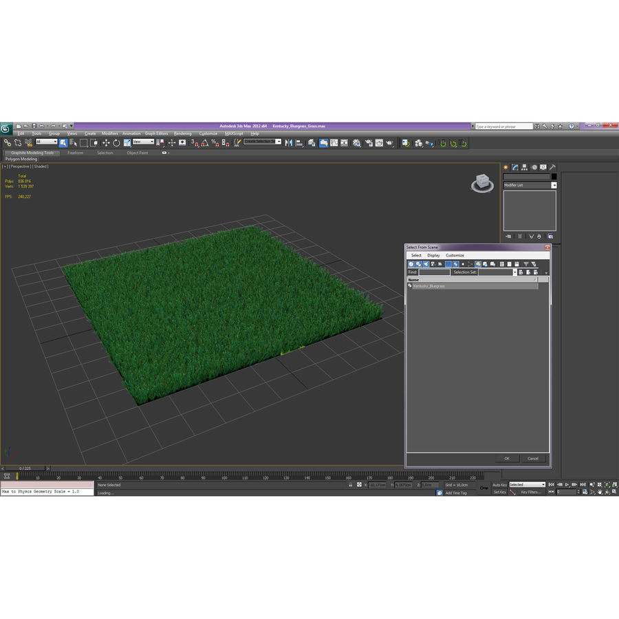 Kentucky Bluegrass Grass royalty-free 3d model - Preview no. 18