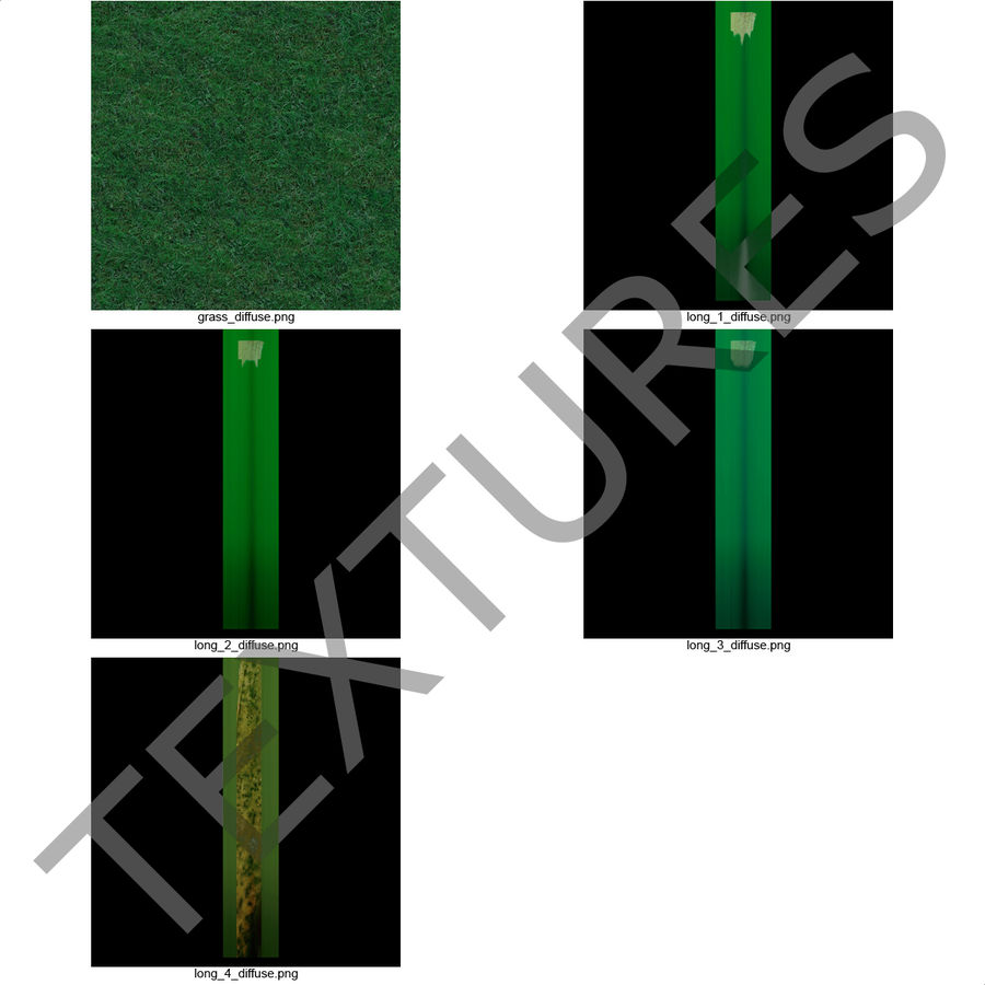 Kentucky Bluegrass Grass royalty-free 3d model - Preview no. 17