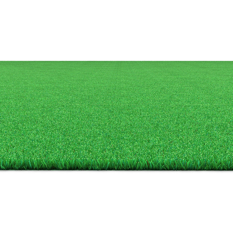 Kentucky Bluegrass Grass royalty-free 3d model - Preview no. 7