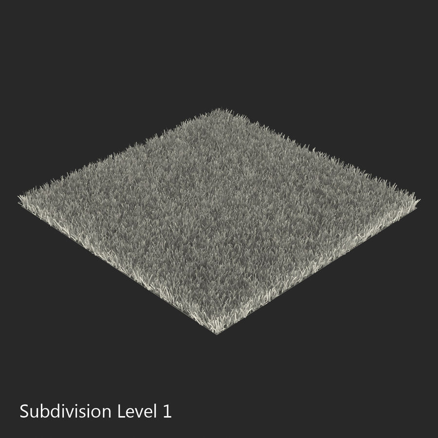 Kentucky Bluegrass Grass royalty-free 3d model - Preview no. 13