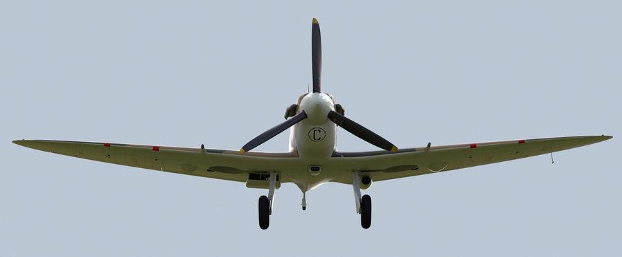 Spitfire Vb royalty-free 3d model - Preview no. 9