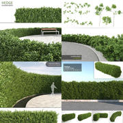Scatterable Hedges Collection 3d model