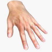 Menschliche Hand 3d model