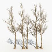 Dry Tree 17 3d model