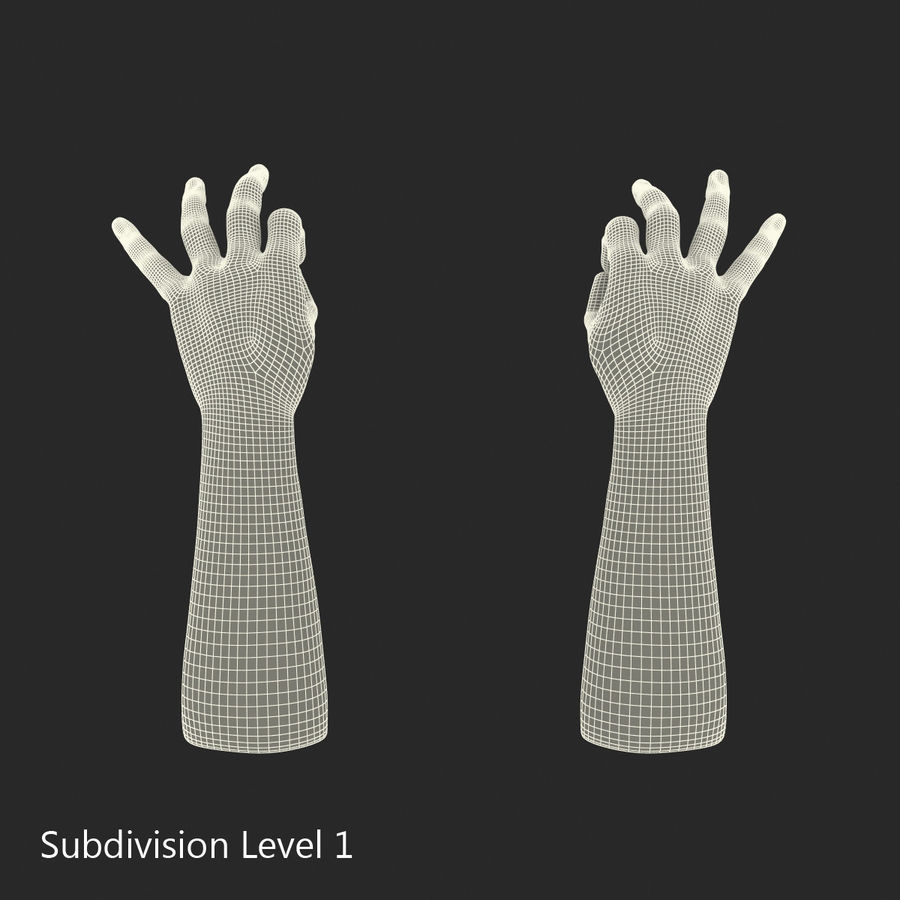 Man Hands Pose 5 royalty-free 3d model - Preview no. 15