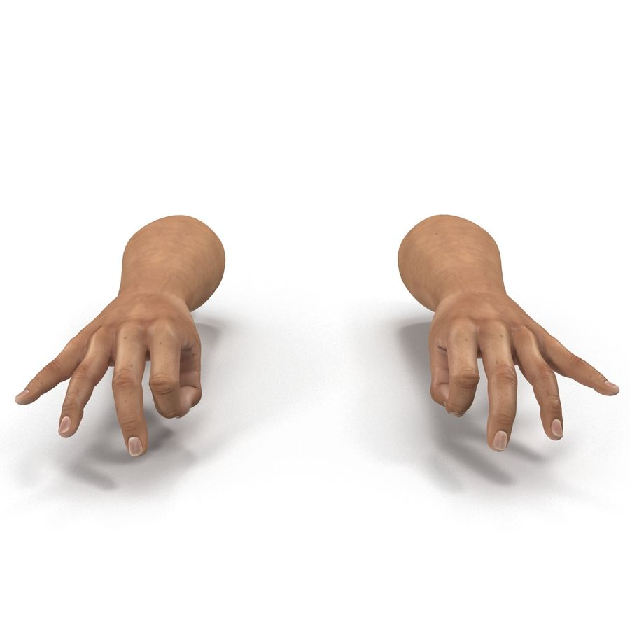 Man Hands Pose 5 royalty-free 3d model - Preview no. 7