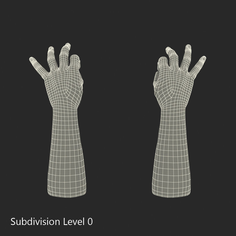 Man Hands Pose 5 royalty-free 3d model - Preview no. 14
