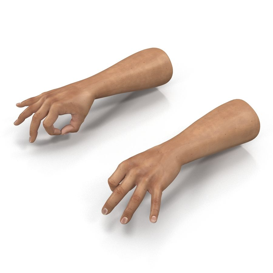 Man Hands Pose 5 royalty-free 3d model - Preview no. 8