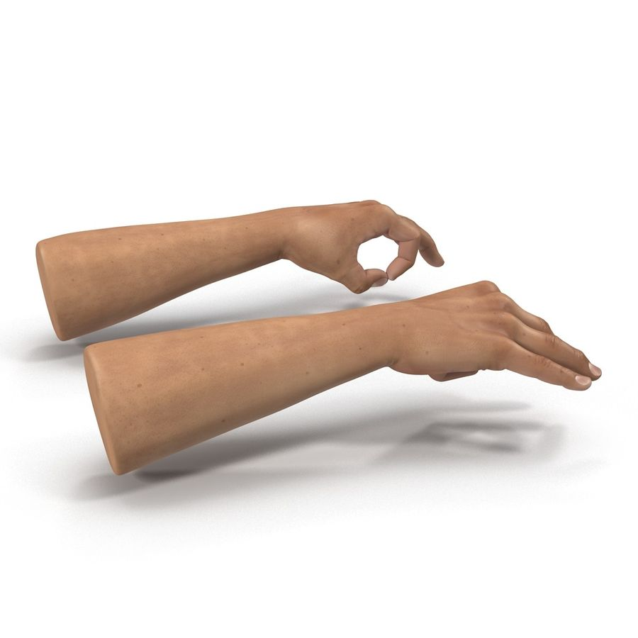 Man Hands Pose 5 royalty-free 3d model - Preview no. 5