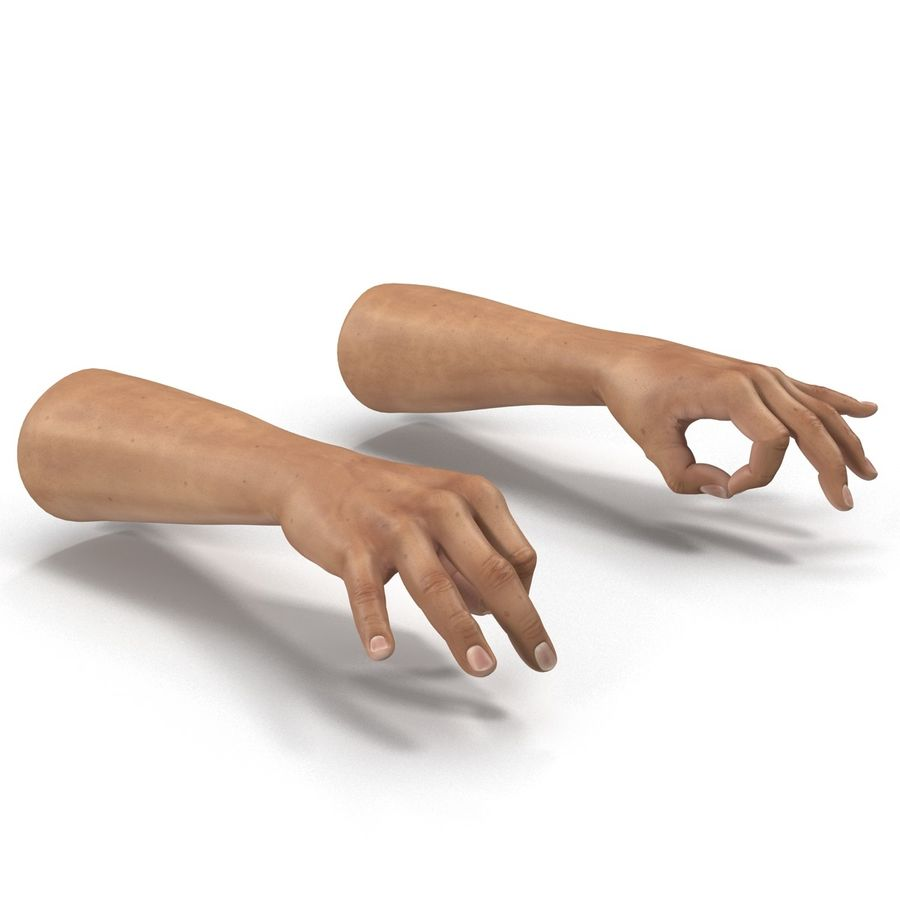 Man Hands Pose 5 royalty-free 3d model - Preview no. 6