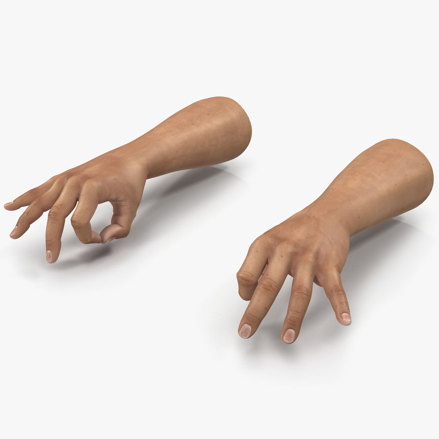Man Hands Pose 5 royalty-free 3d model - Preview no. 1