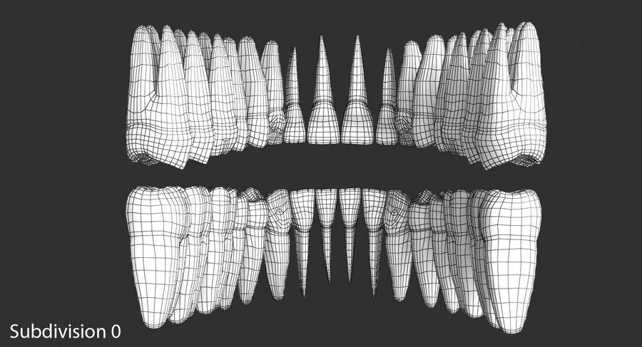 Model 3d ludzkich zębów royalty-free 3d model - Preview no. 13