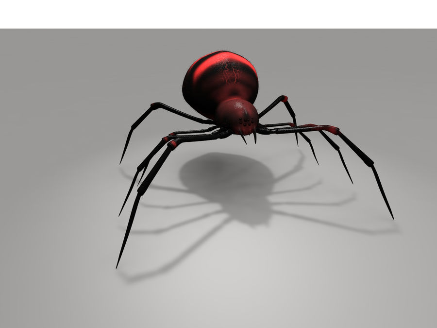 Aranha vermelha royalty-free 3d model - Preview no. 4