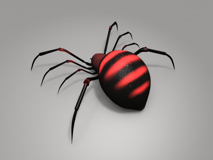 Aranha vermelha royalty-free 3d model - Preview no. 5