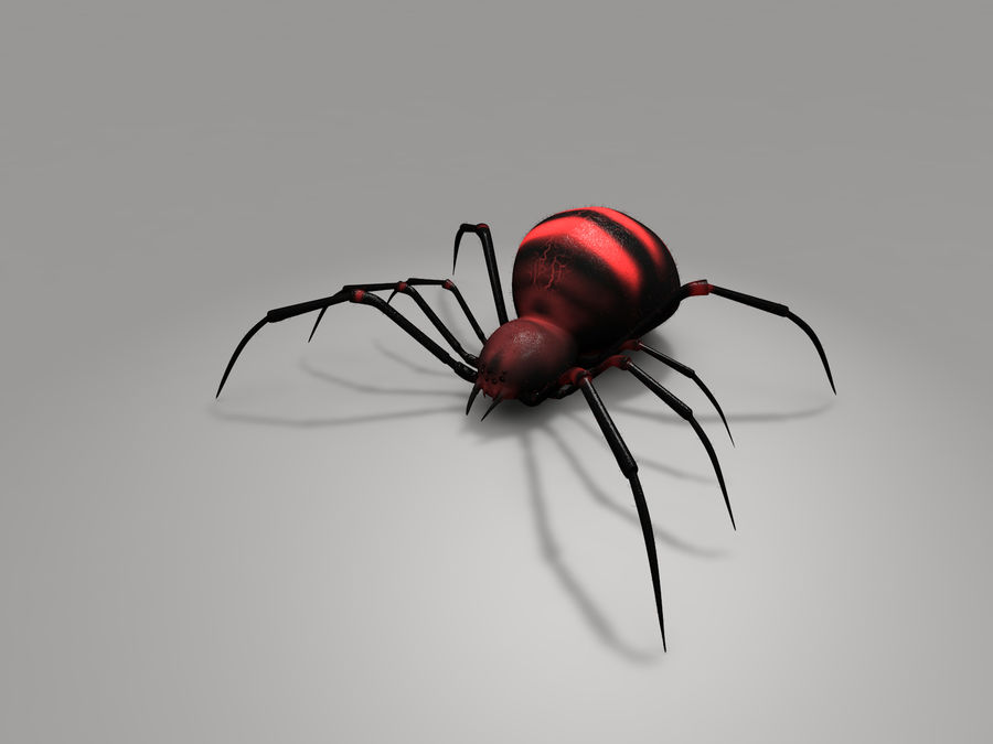 Aranha vermelha royalty-free 3d model - Preview no. 1